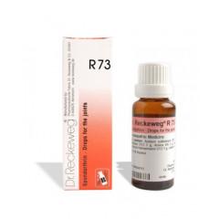 RECKEWEG R73 GOCCE 22 ML