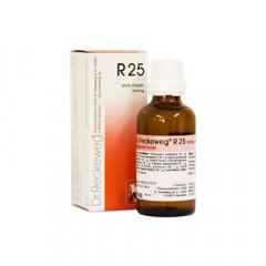 RECKEWEG R25 GOCCE 22 ML