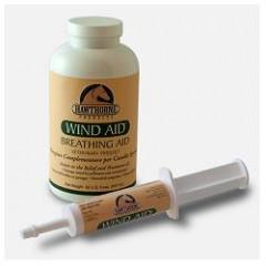 WIND AID SCIROPPO 947ML