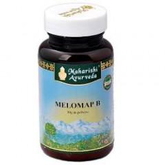 MELOMAP B POLVERE 30 G