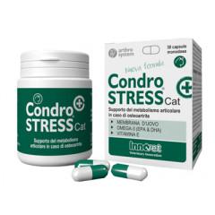 CONDROSTRESS + CAT 30 CAPSULE MONODOSE
